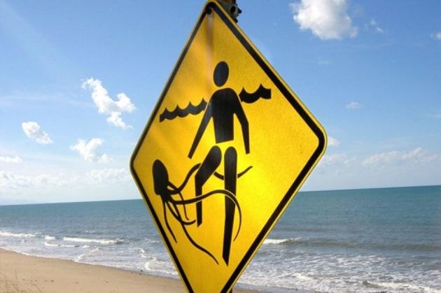 Come difendersi dalle meduse