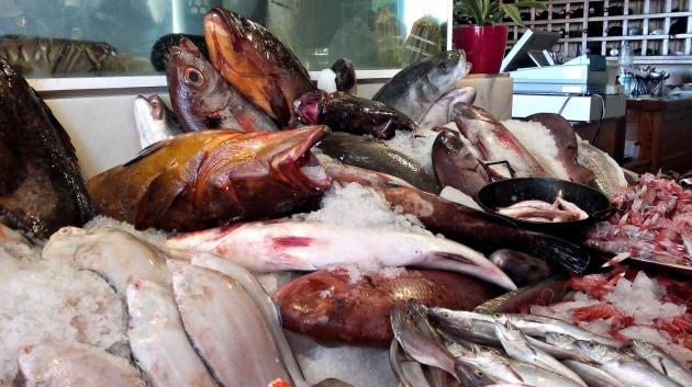 Le pratiche di pesca fuori controllo e le riserve ittiche