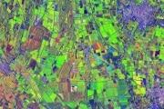 agricoltura_paesaggioitaliano_pavese