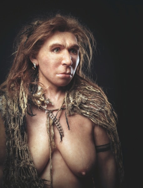 c0208155-neanderthal_model_preview