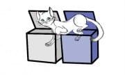 nuovo-gatto-di-schrodinger