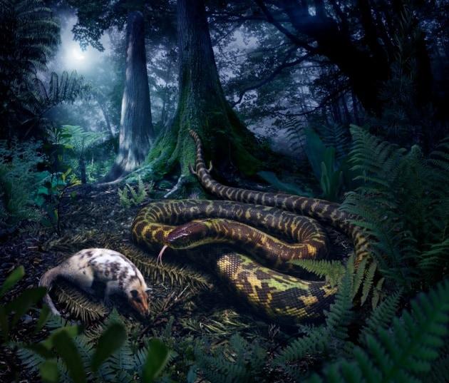 Gli antenati dei serpenti, notturni e con le zampe
