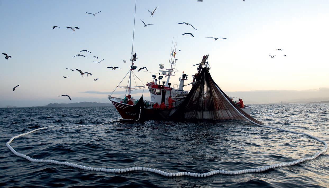 Yamalo-Nenets pesca di area Autonoma di video
