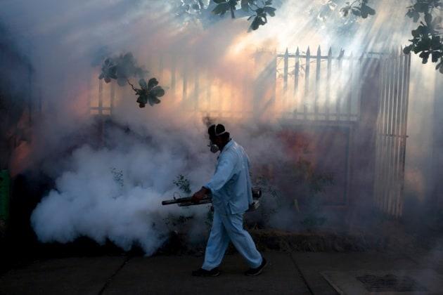 Virus Zika, 7 modi per combatterne la diffusione
