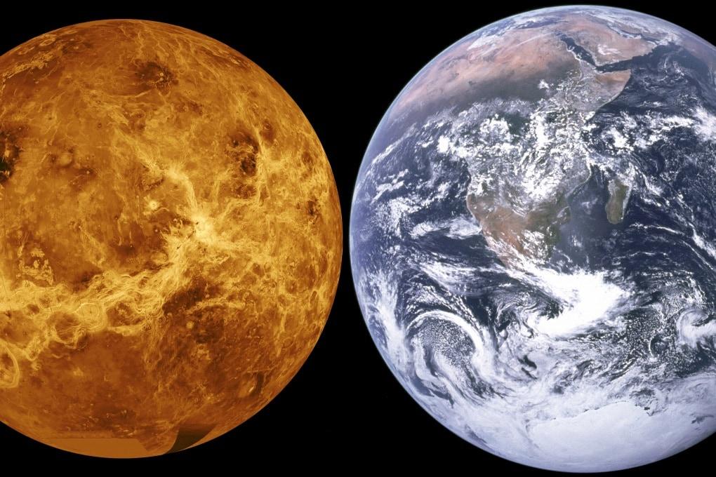 Venere potrebbe aver ospitato la vita