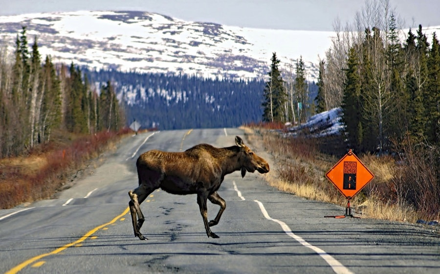 jlsphotography-alaska