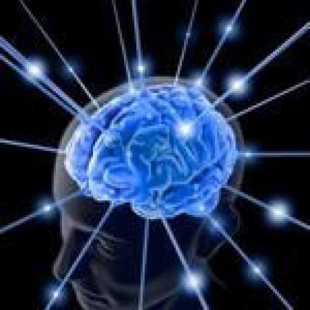 cervellodalweb-kn9g-u3163514192a6h-150x1