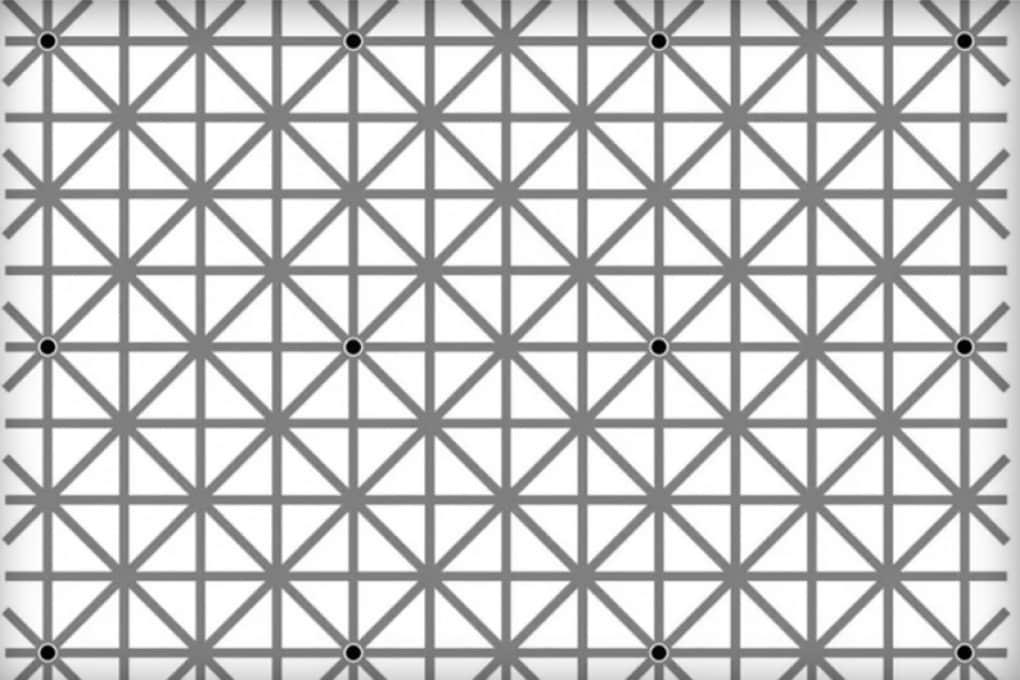 Quanti puntini conti in questa foto?