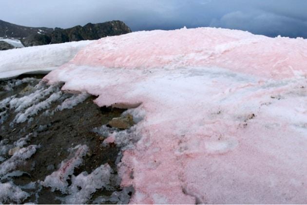 Risultati immagini per neve rossa