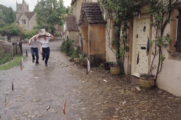 Piovono rane (e molto altro ancora)