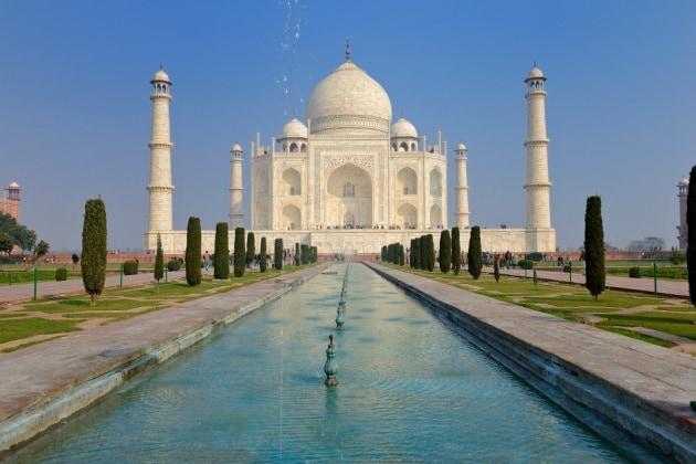 L'insetto che sta cambiando colore al Taj Mahal