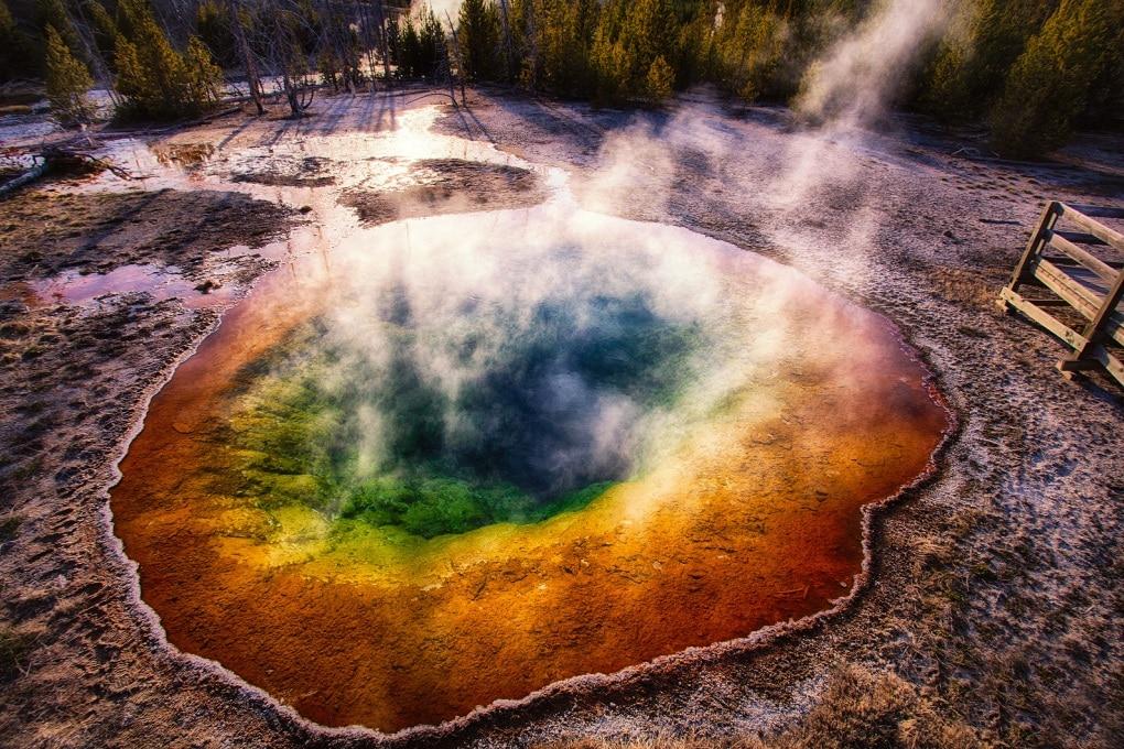 La fotosintesi è più antica del previsto