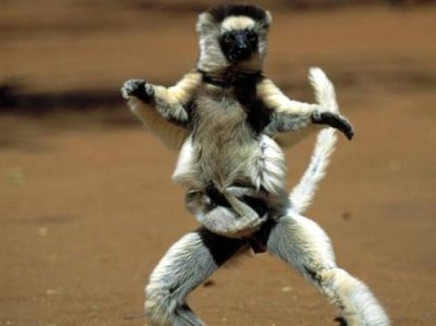 lemure_danza_inf-k1ud-1280x960produzione