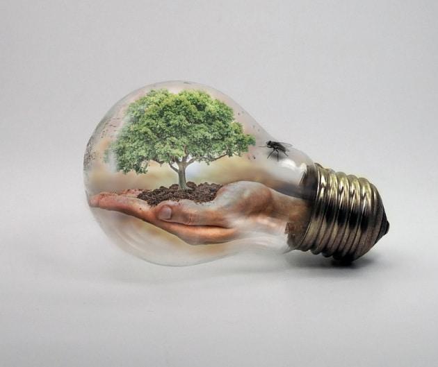 Cambiamenti climatici: tutti possiamo fare qualcosa