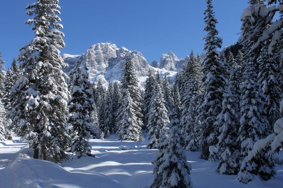 inverno-a-venegia_irene-perotti