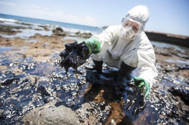 Risultati immagini per spugna intelligente per la pulizia dei mari