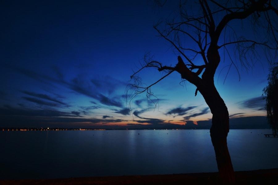 silhouette-ivo-marchesini