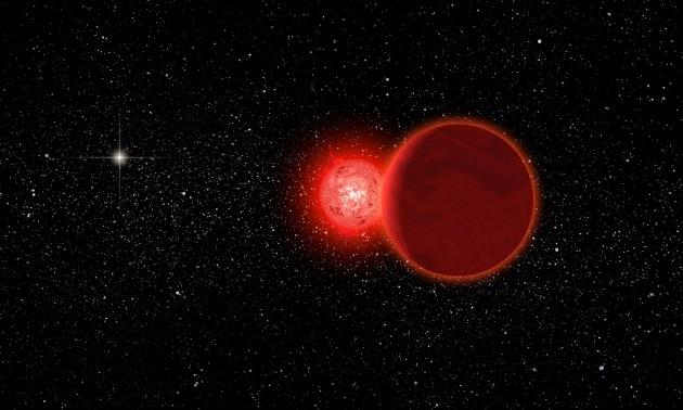 stella-di-scholz_1680
