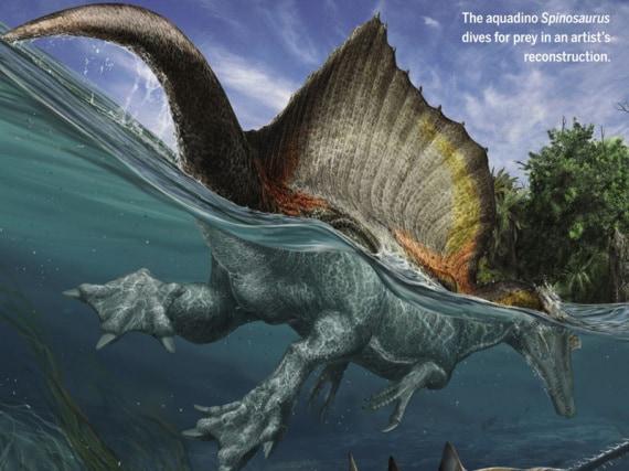 dinosauri, dinosauri carnivori, spinosauro