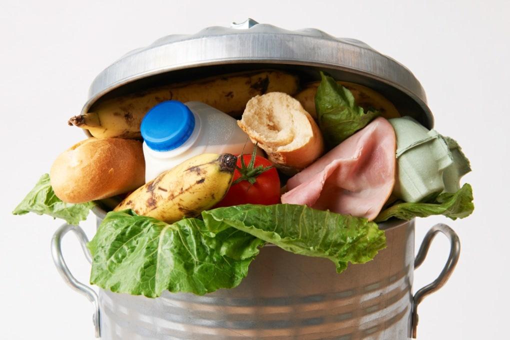 Dal campo alla pattumiera, lo spreco di cibo vale 16 miliardi l'anno
