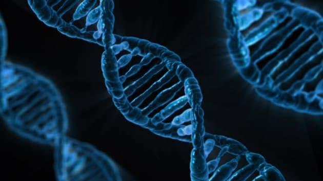 I rischi delle armi genetiche