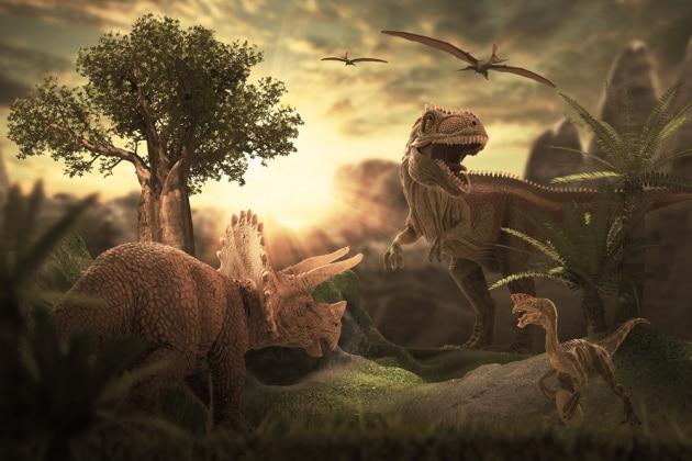 Il grande dinosauro carnivoro del Sudafrica