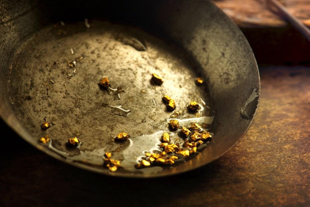 Il batterio che digerisce pepite d'oro