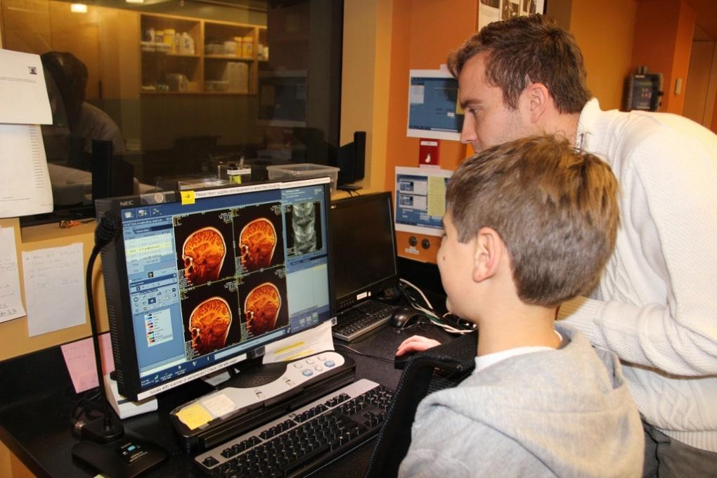 Una parte del cervello cresce anche in età adulta
