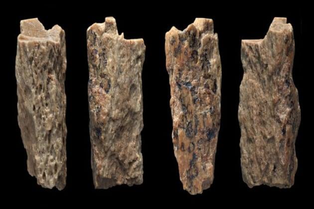 Metà Neanderthal e metà denisoviana: una bambina di 50.000 anni fa
