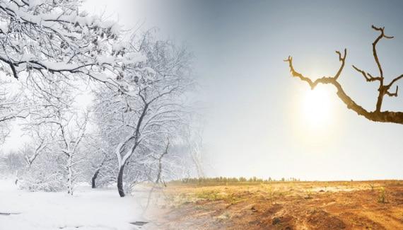 stagioni, riscaldamento globale, ritmi stagionali