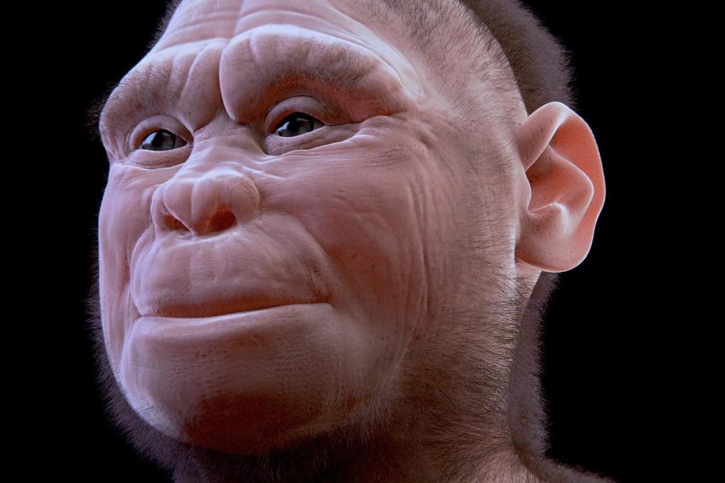 Prima di tutti gli altri: un misterioso ominide viveva 700.000 anni fa nelle Filippine