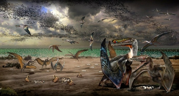 pterosaureggs