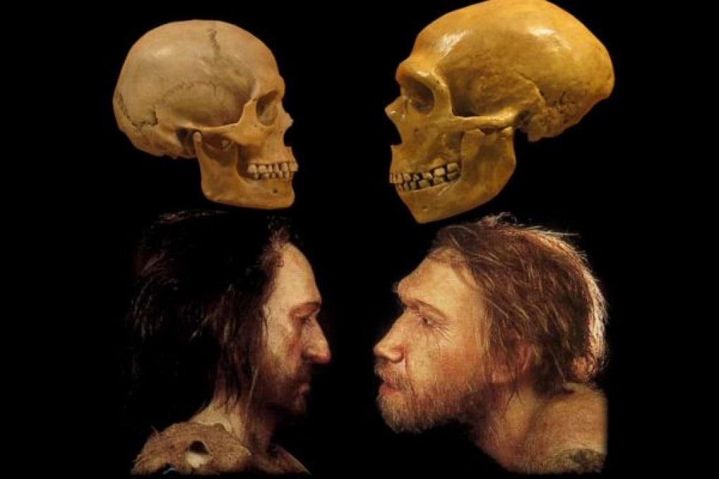Nuovi studi su genomi completi dei Neanderthal
