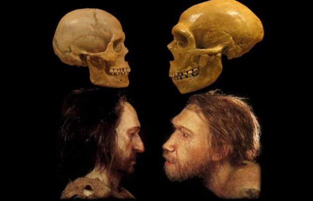 La pancetta? L'abbiamo ereditata dall'Uomo di Neanderthal!