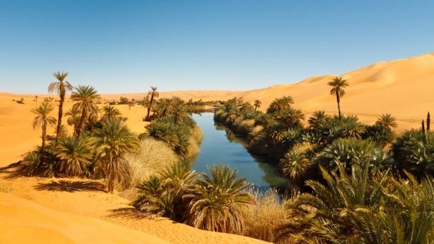 Il  primo  orto  nel Sahara diecimila anni fa