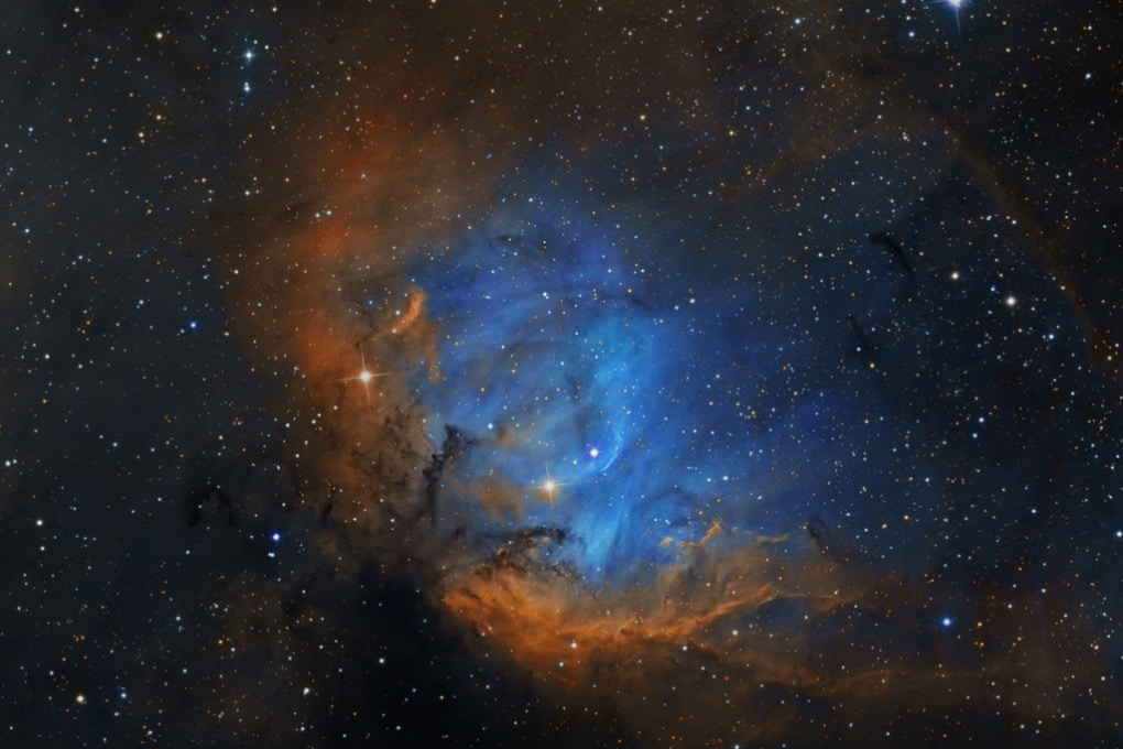 La Nebulosa Tulipano