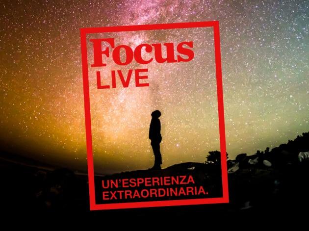 focus-live-web02