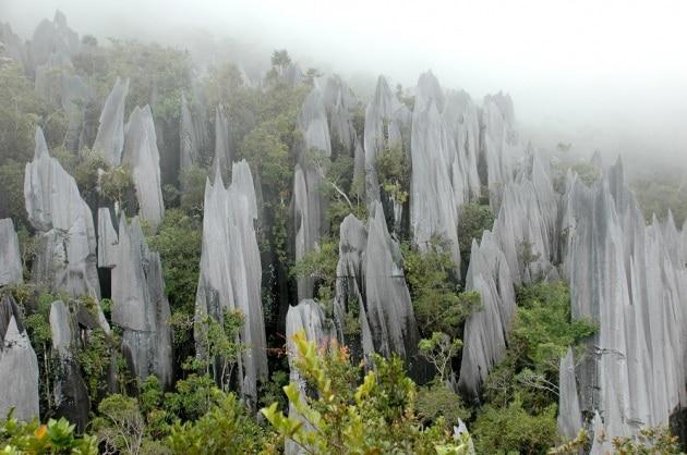 Un quarto dell'azoto terrestre viene dalle rocce