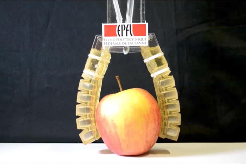 Il primo robot che puoi mangiare