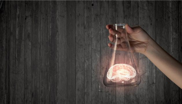 Cervelli di maiale tenuti vivi fuori dal corpo: a cosa è servito?