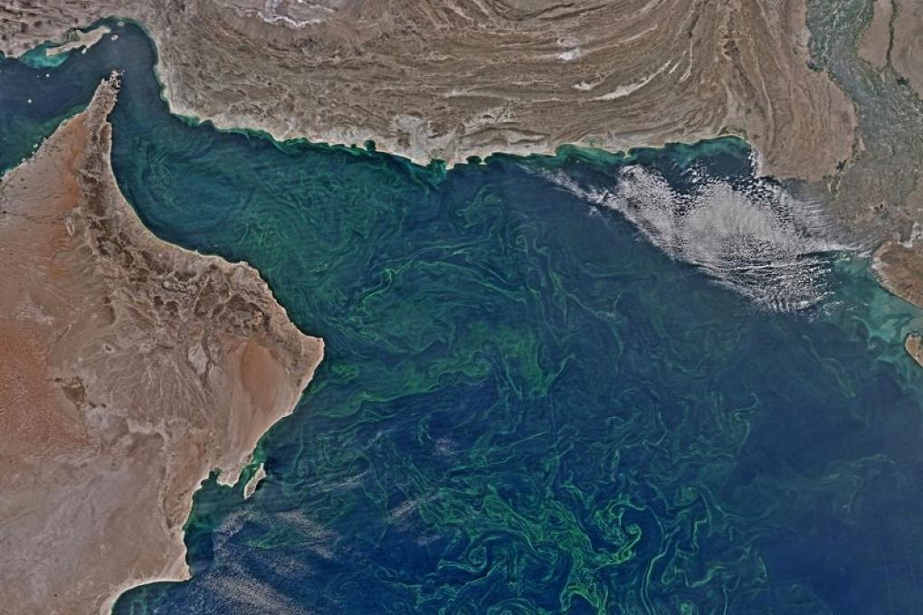 Un'inquietante fioritura d'alghe nel Mare Arabico