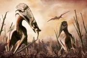 pterosauro-hatzegopteryx