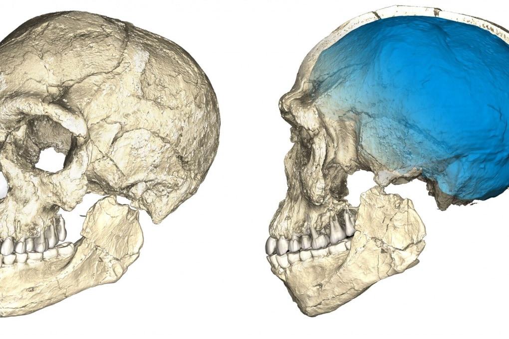 Scoperto un nuovo importante fossile umano