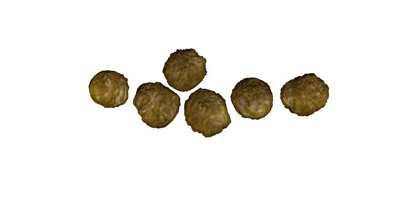 garcinia cambogia cacca puzzolente