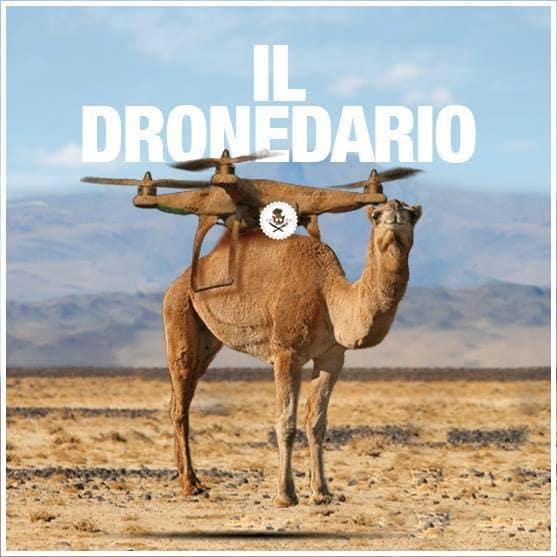 dronedario