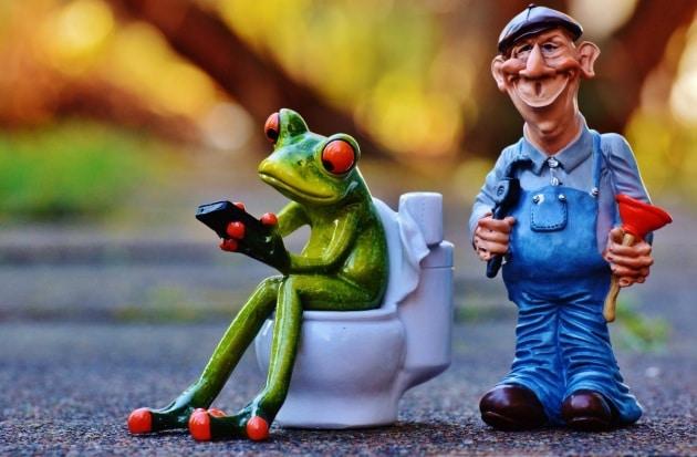 plumber_frog_loo_p_