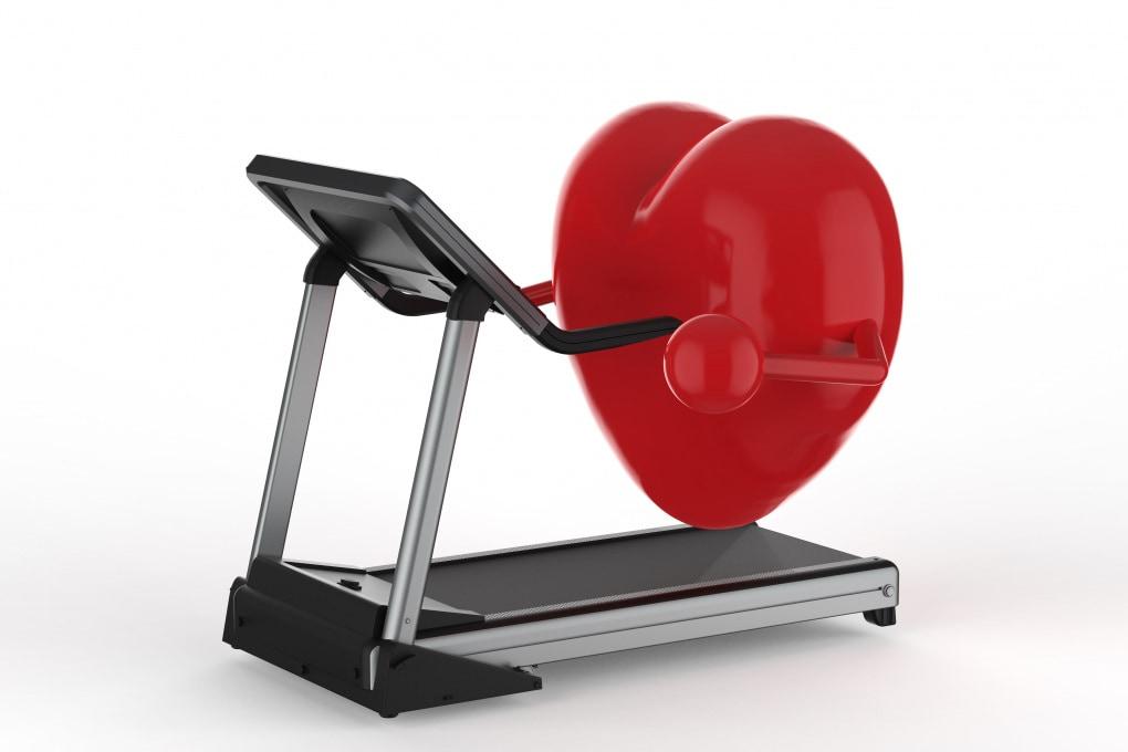 La proteina ideale per il cuore