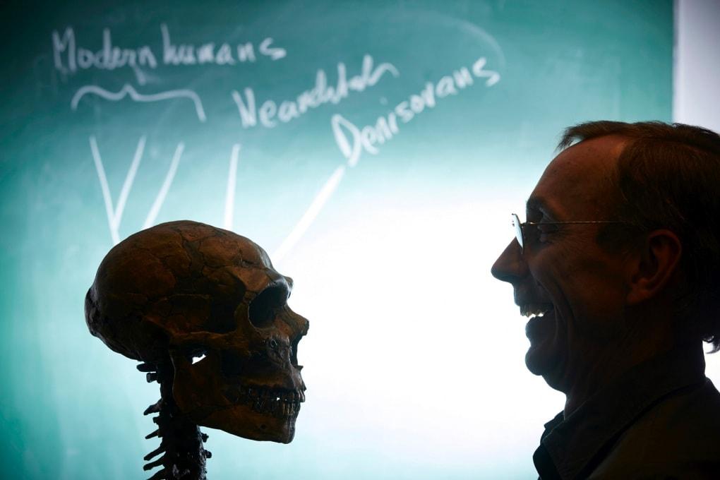 Com'era fatto l'orecchio dei neanderthaliani