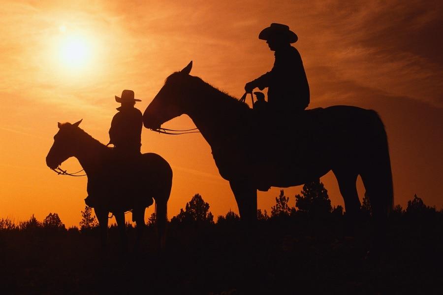 cowboyhorses
