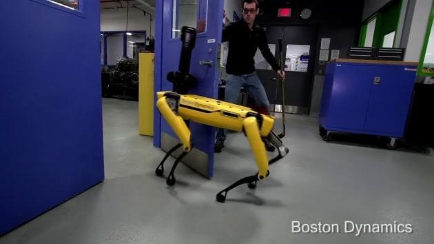 Il robot-cane SpotMini sa difendersi dall'uomo